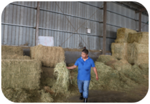 Integrated management of straw residue